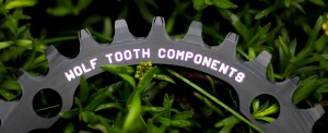 WTC tooth detail